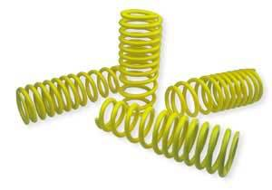Neuspeed - 2002-2005 Honda Civic Si Neuspeed Race Springs