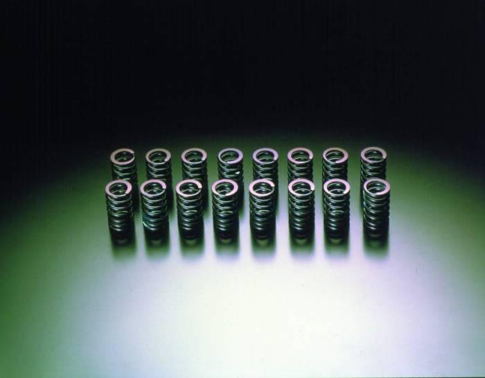 HKS - 2006-2007 Mitsubishi Evolution IX HKS Valve Spring Set